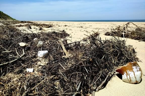 Come help with coastal debris and other trash at the beaches of Parker River Wildlife Refuge