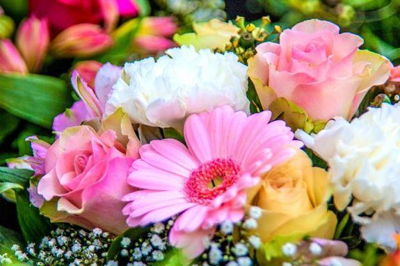 Flower Pop at MarketStreet Lynnfield