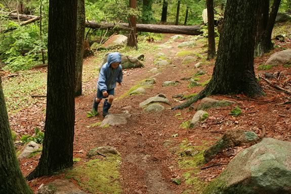 Get some exercise on this five-mile long woodland rocky loop through Ravenswood