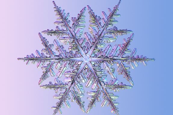 Come explore snowflakes from outside and in during this hands-on workshop.