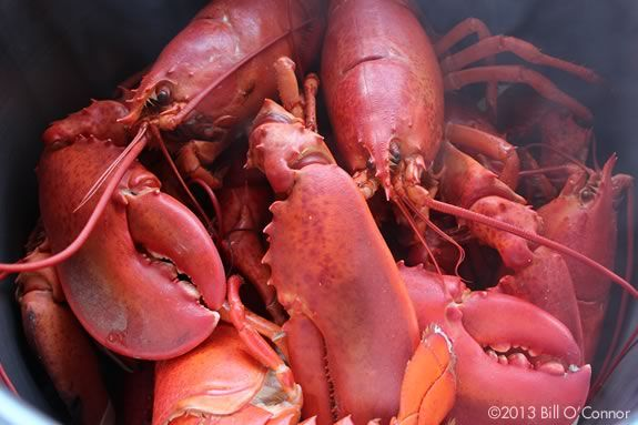 Enjoy lobster at the beach in Rockport Massachusetts at the annual Rotary Club lobsterfest!