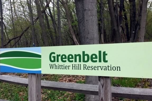Celebrate National Trails Day at Whittier Hill Reservation in Amesbury Massachusetts with the Essex County Greenbelt Association.