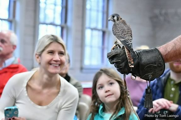 Wingmasters present live North American Birds of Prey at Mass Audubon's Ipswich River Wildlife Sanctuary