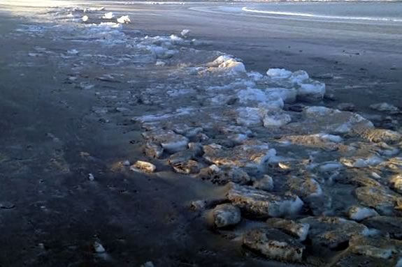 Winter Beavch Safari for all ages at Nahant Beach hosted by Massachusetts DCR