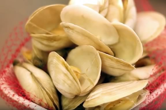 Enjoy food, live music and all kinds of family fun at the Essex Clam Fest! Photo: An order of steamed clams from Woodman's of Essex