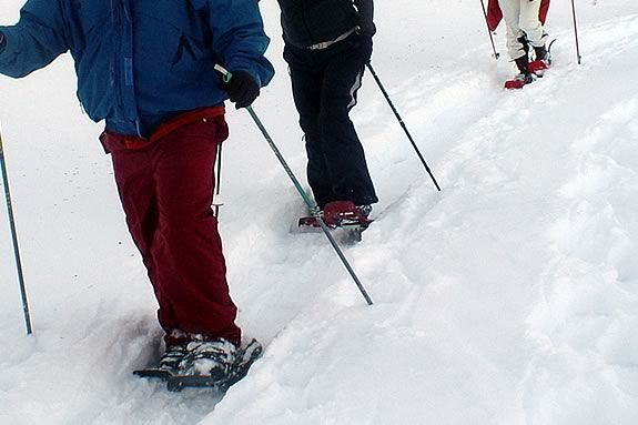 If it ever snows, this will be a great exploration of IRWS on snowshoes!