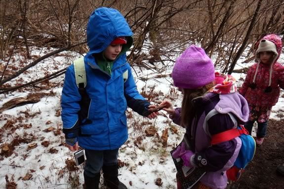 Kids can get outsoors andf explore the wilds of the North Shore with Kestrel Educational Adventures during February Vacation
