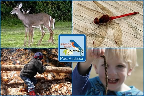 Four days of exploring and natural adventure await your child at IRWS!