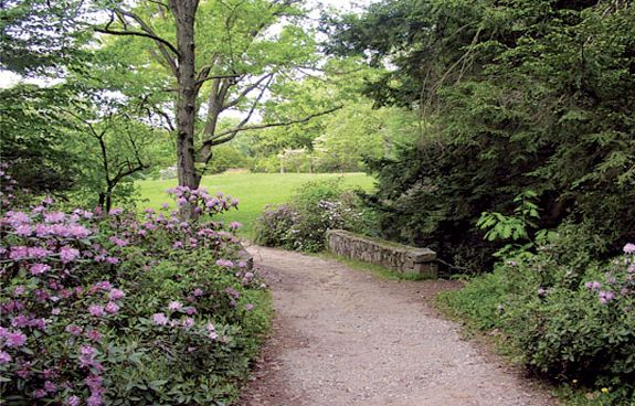 Great Picnic Spots for North Shore Families and Children