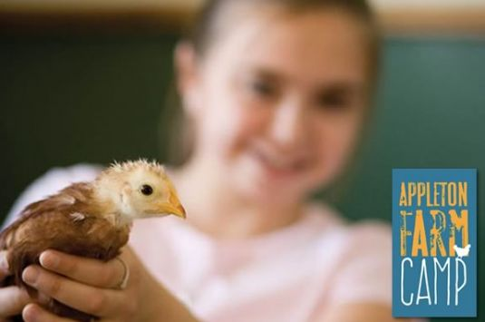Summer programs and Camps at The Trustees Appleton Farms in Ipswich Massachusetts