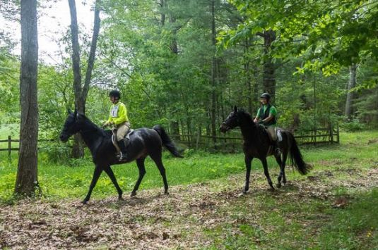 Essex County Trail Association is hosting the 22 annual Equine EXPO