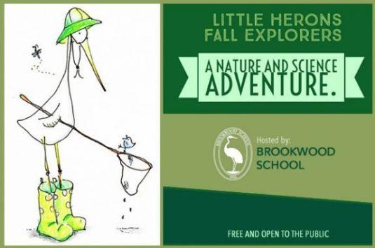 Brookwood School things to do for preschool children.
