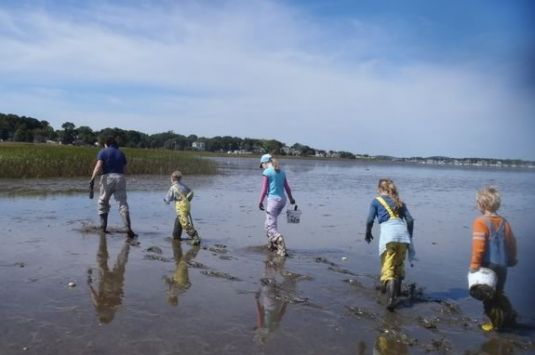 Explore the marsh and mud at Joppa Flats Education Center in Newburyport!
