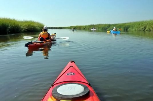 Paddle the waters of the Parker River Wildlife Refuge on this ranger guided tour.