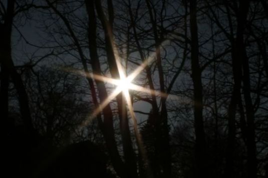 Come celebrate the longest night - Winter Solstice - at Harold Parker State Forest