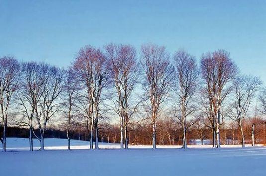 Winter Weekends at Appleton Farms in Ipswich Massachusetts