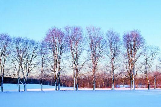 Appleton Farm's Winter Explorers program is geared to children aged 7-11