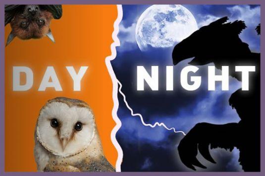 Franklin Park Zoo events for NorthShore Children