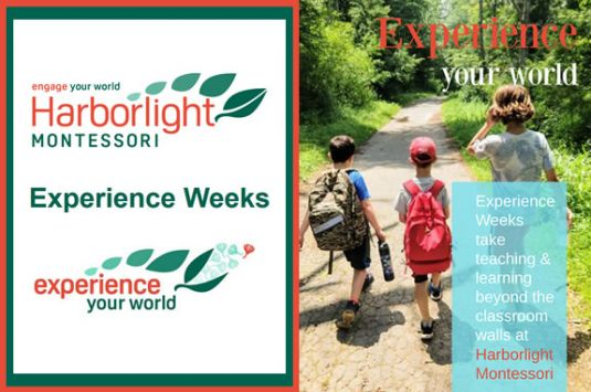 School Vacation Harborlight Montesorri Harborlight's Experience Weeks